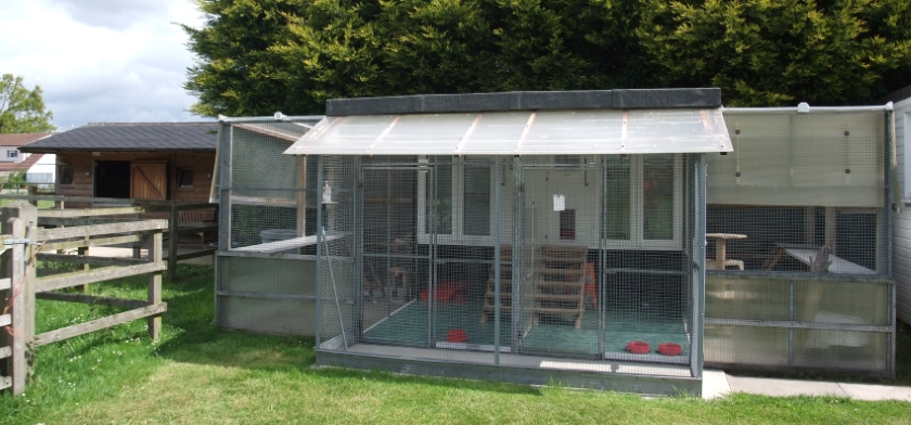 Family cat pens - accommodation for up to five cats